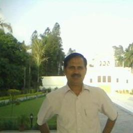 View Raj Singh's profile