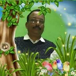 View Dhruba Pradhan's profile
