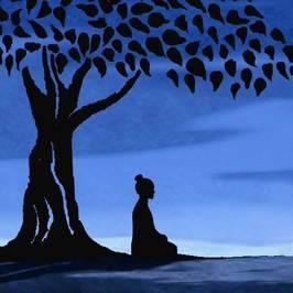 View Vedic wisdom's profile