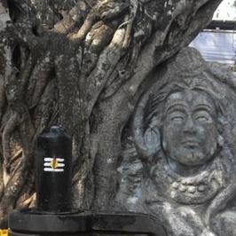 View Shivohananda Chaitanya's profile