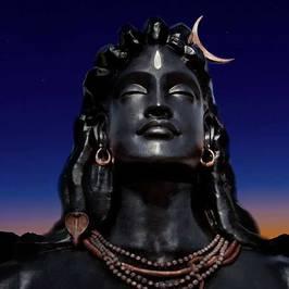 View Piyush Amrit's profile