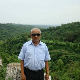 View Vithalbhai Bhavsar's profile