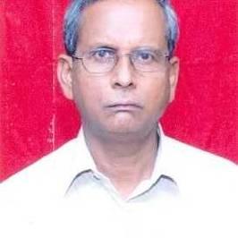 View Nilratan Roy's profile
