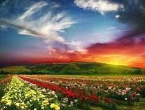 ईश्वर तो सर्वव्यापी अन्तर्यामी है
