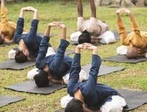 हठ योग – योगासन और क्रिया में क्यों लगाए जाते हैं बंध?