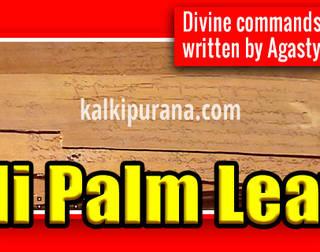 Greatness of Nadi Astrology (Nadi Palm Leaves)