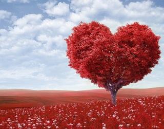How do you define TRUE LOVE?