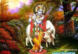 Importance of Bhagavad Gita