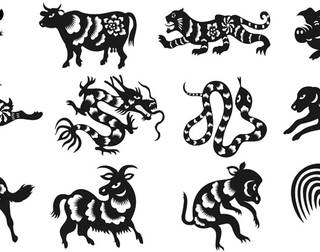 Chinese Astrology decodes 2018 for you based on your birth year