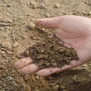 मिट्टी से वशीकरण करने से पहले इन चीजों का रखें खास ध्यान