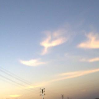 OM APPEARING IN SKY
