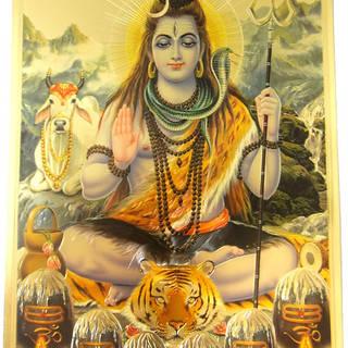ॐ नमः शिवाय, हर हर महादेव... कुछ अद्भुत रहस्य व मंत्र