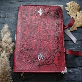 एक लाल डायरी भाग 2