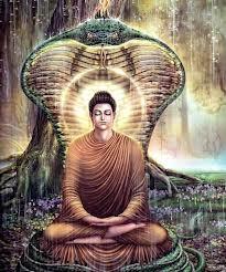 Divine Teaching 53