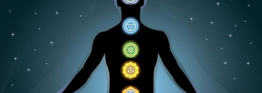 The Chakra Anatomy