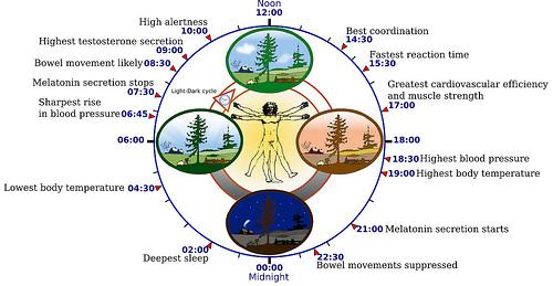 Develop Good Sleep Habits...