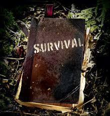 Survival Rule 2