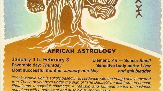 Baobab (January 4th- Febuary 3rd)