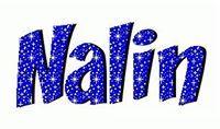 Nalin Raina