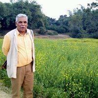 Rajendra Kumar Chadha
