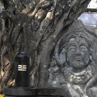 Shivohananda Chaitanya