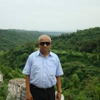 Vithalbhai Bhavsar