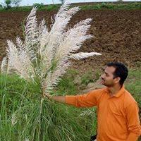 Suresh Aakula