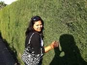 Suchita