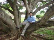 Arvind Prajapati