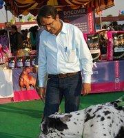 Sunil rajdev