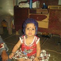 Narender Raju