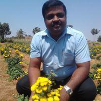 Vinay Kavan Gowda