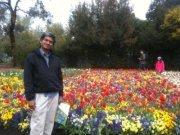 Guravareddy Induri