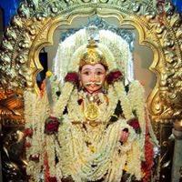 Vidya Vinod Shetty