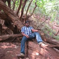 Patels Jalandhar