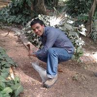 Harsh Bhatera