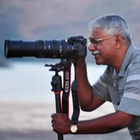 Arvind Telkar