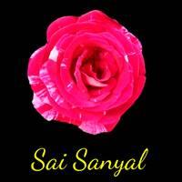 Sai Sanyal