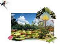 Read full spiritual article: Paradise Found