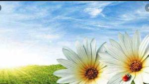 Confident Of Divine Grace