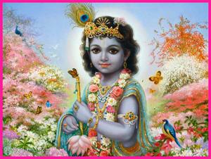 The Spirit of Krishna