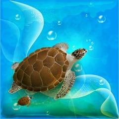Turtle A Symbol Of Good Luck And Divinity Spiritual Blog World Hindu News